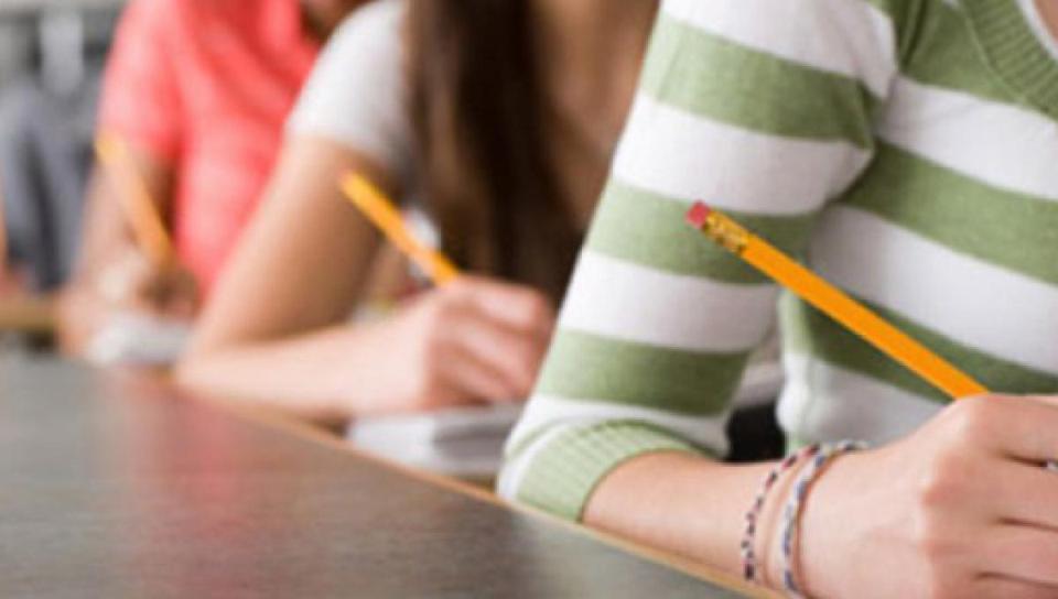 La valutazione è garantita dalla professione docente